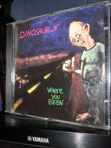 dinosaur jr where you been