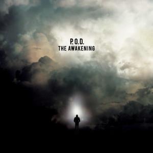pod awakening