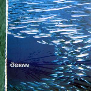 the ocean fluxion